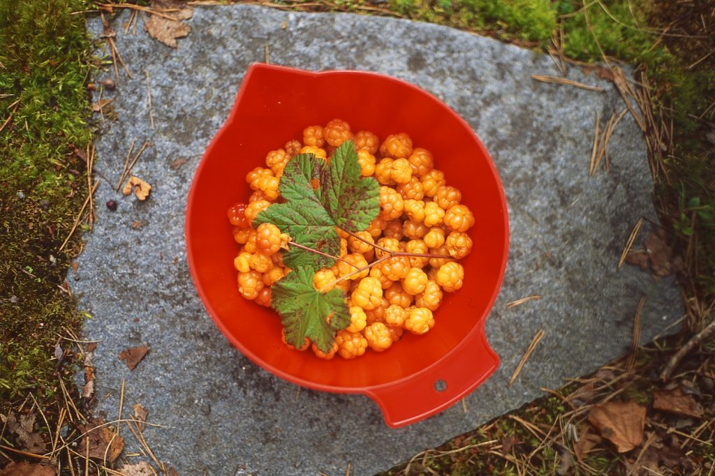 Image of a bowl of yellow berries on a stone step.