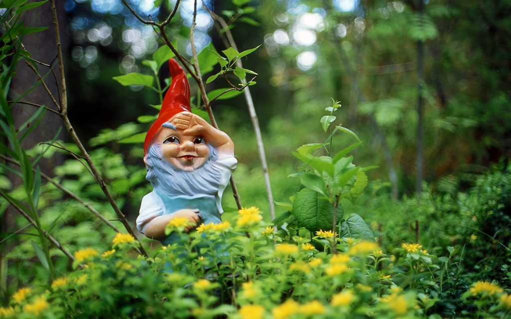 Image of a garden gnome in the woods.