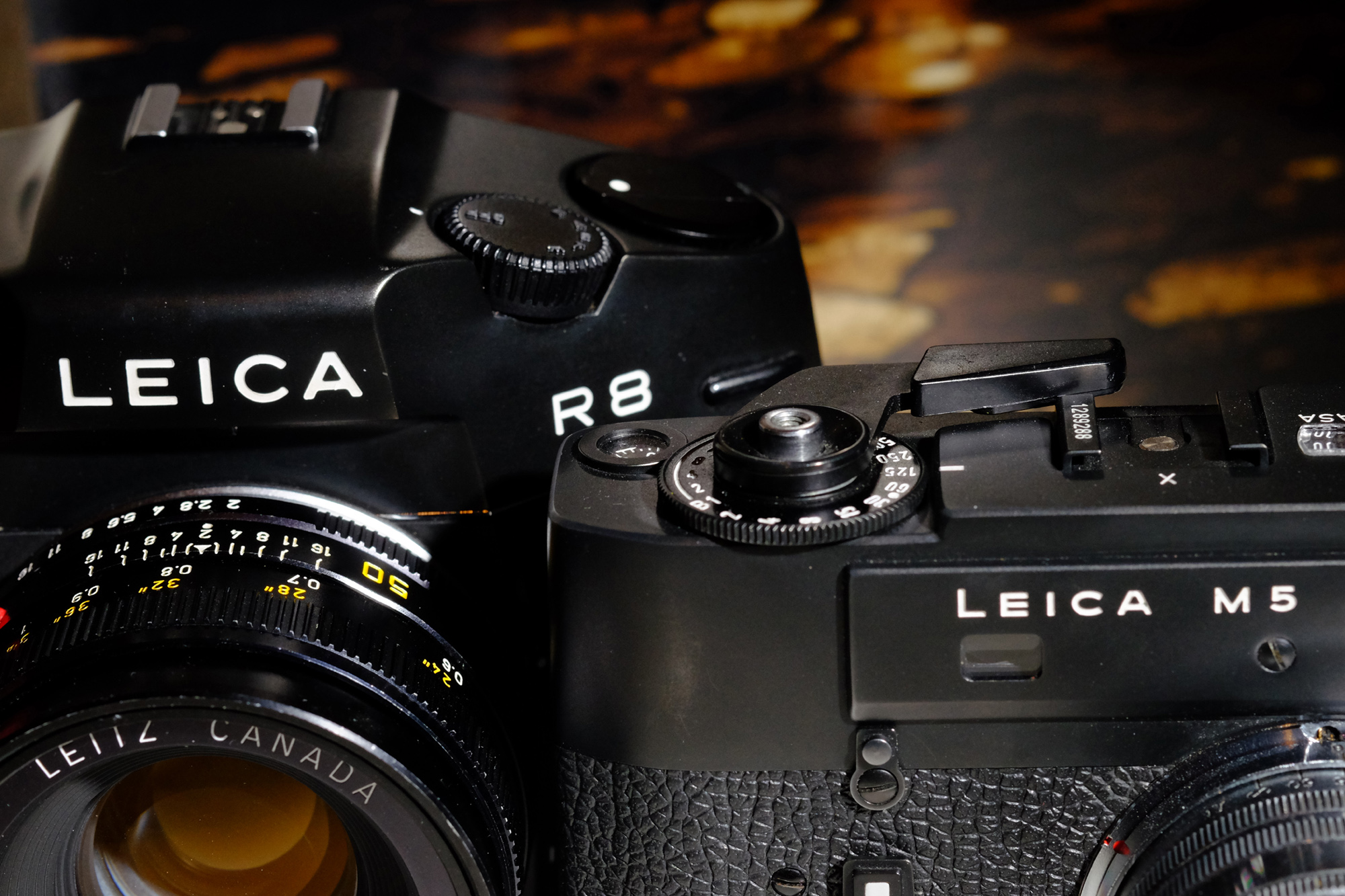 Forgotten Divas: In Defence of the Leica M5 and R8 – by Markus Maurer