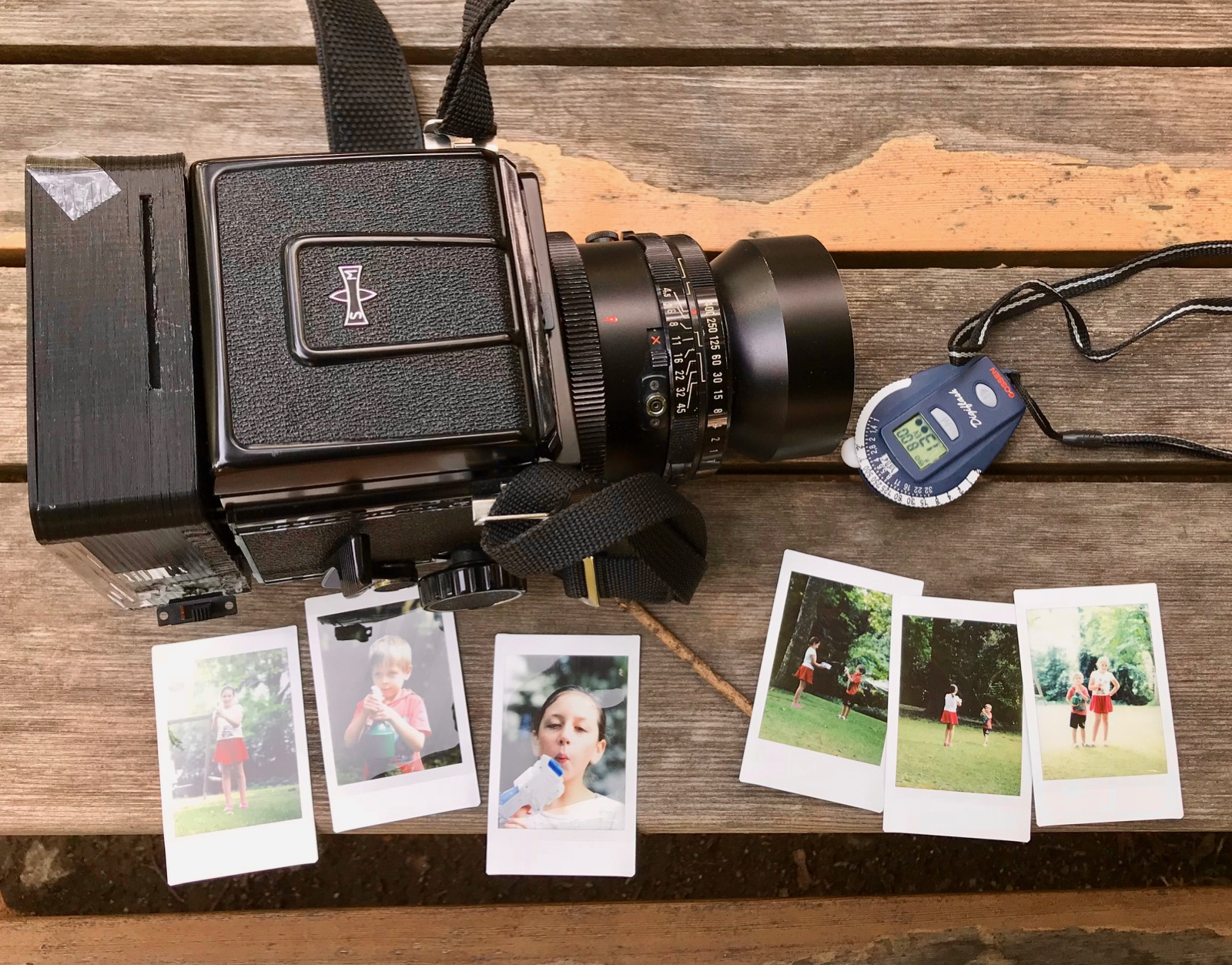 Maminstax in the wild