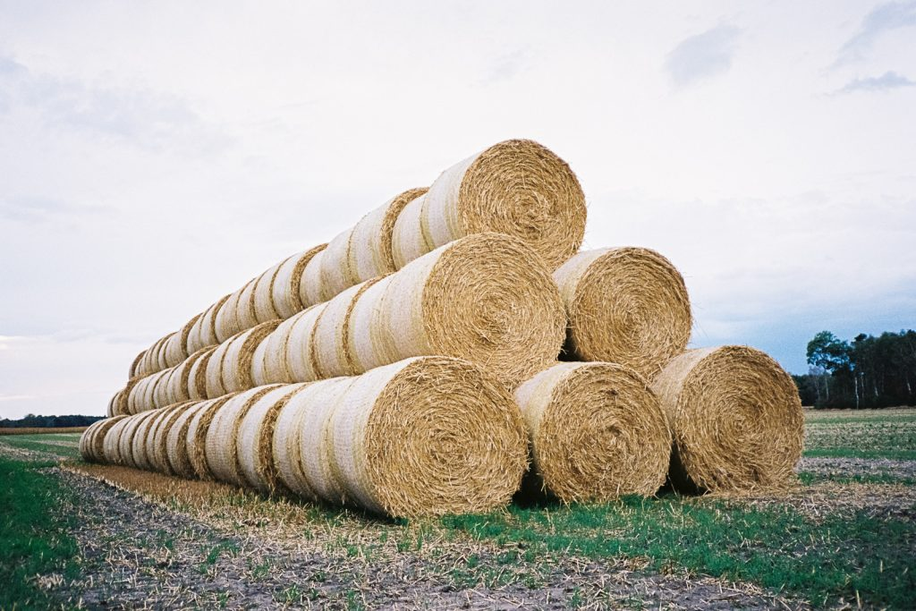 A large stack of straw bales, captured with a point-and-shoot camera.