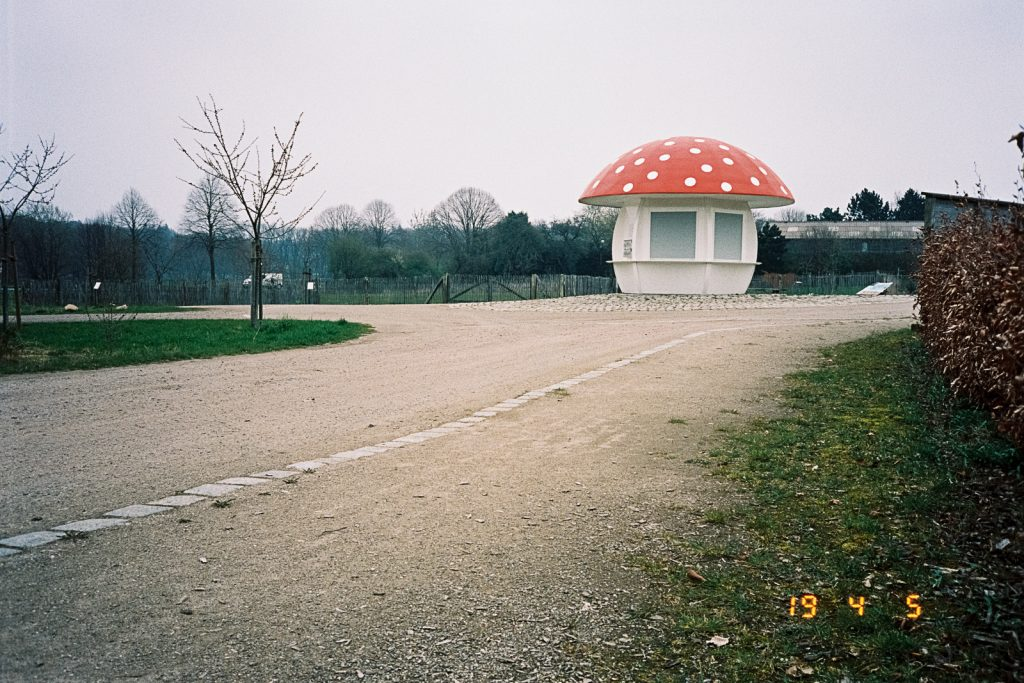 A small selling booth in the shape of a fly agaric.