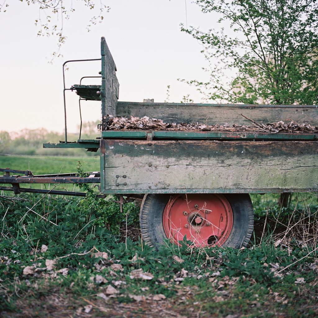 Rural scene taken with a Hasselblad medium format camera on 6x6 negative.