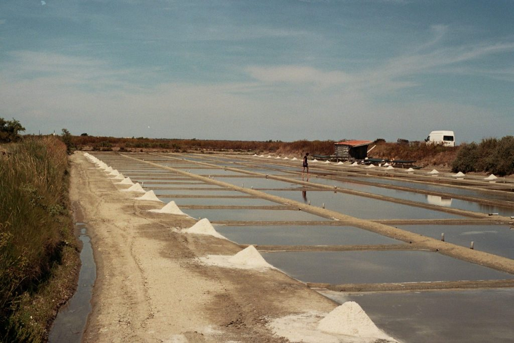Salt Pans of Ile de Re