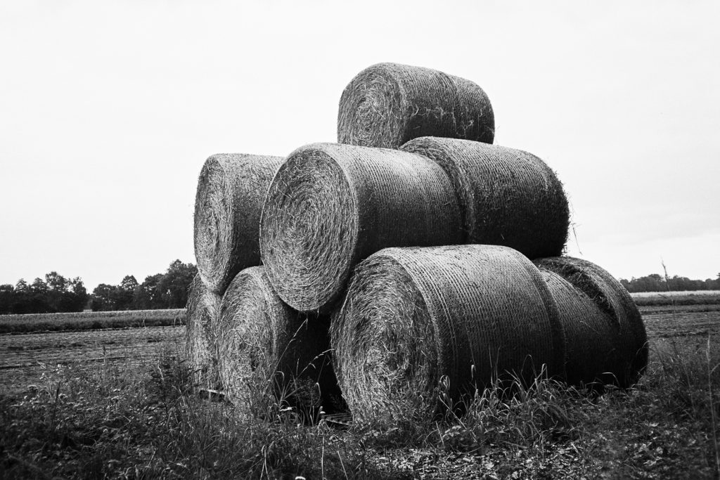A pile of round straw bales found in the agricultural landscapes.