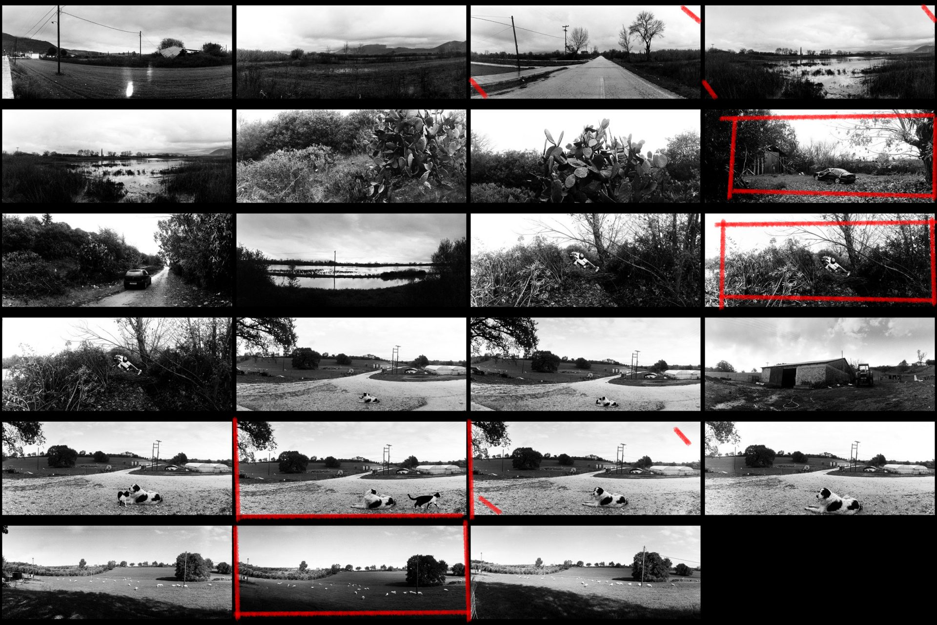 Ilford Pan 400 contact sheet, shot with Horizon 202 panoramic camera.