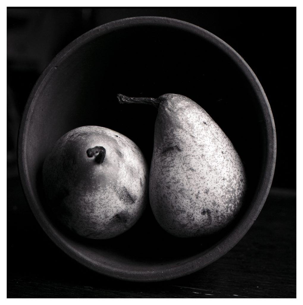 Two pears in a plant pot. Black and white