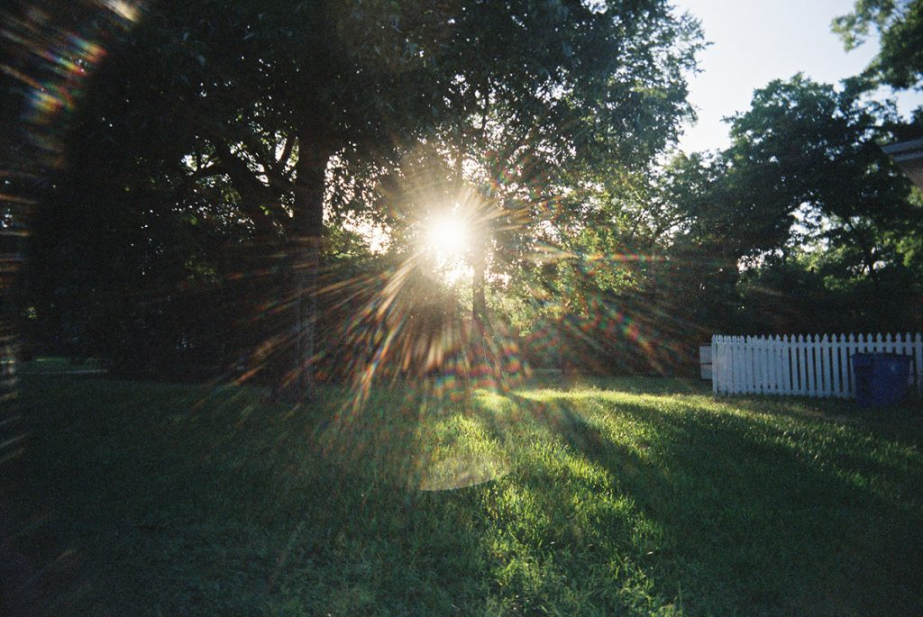 Sun flare across a green lawn, taken with a White Slim Angel 35mm plastic point and shoot film camera.