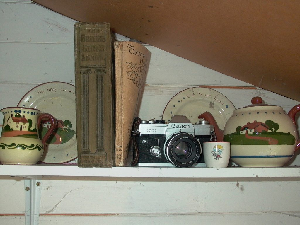 photograph of camera among shelf of ornaments