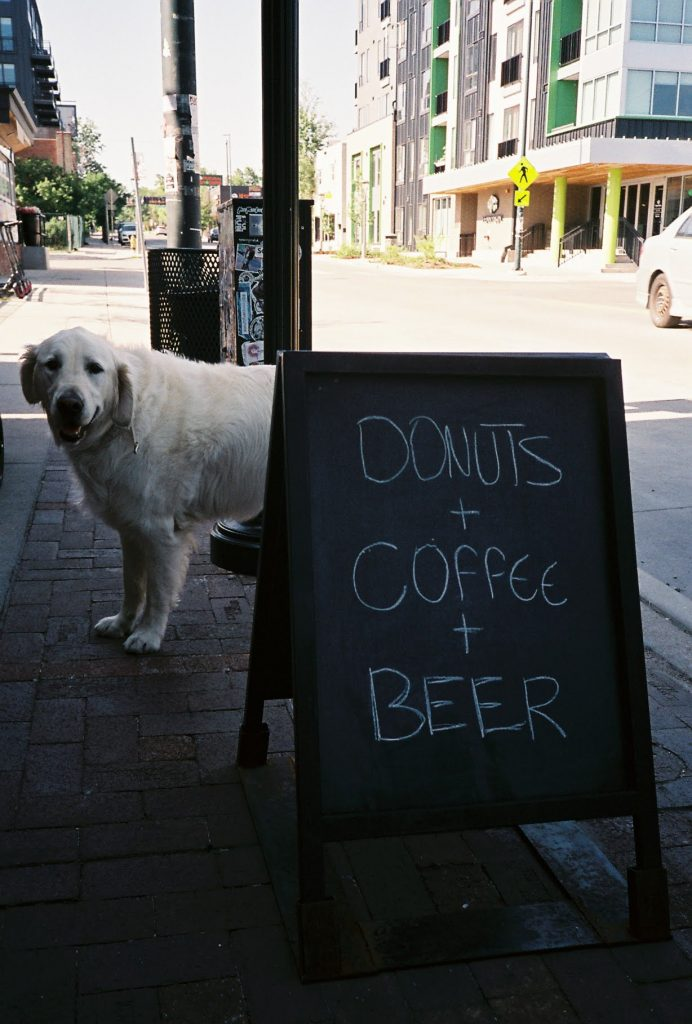 Dogs, Donuts, Coffee, and Beer