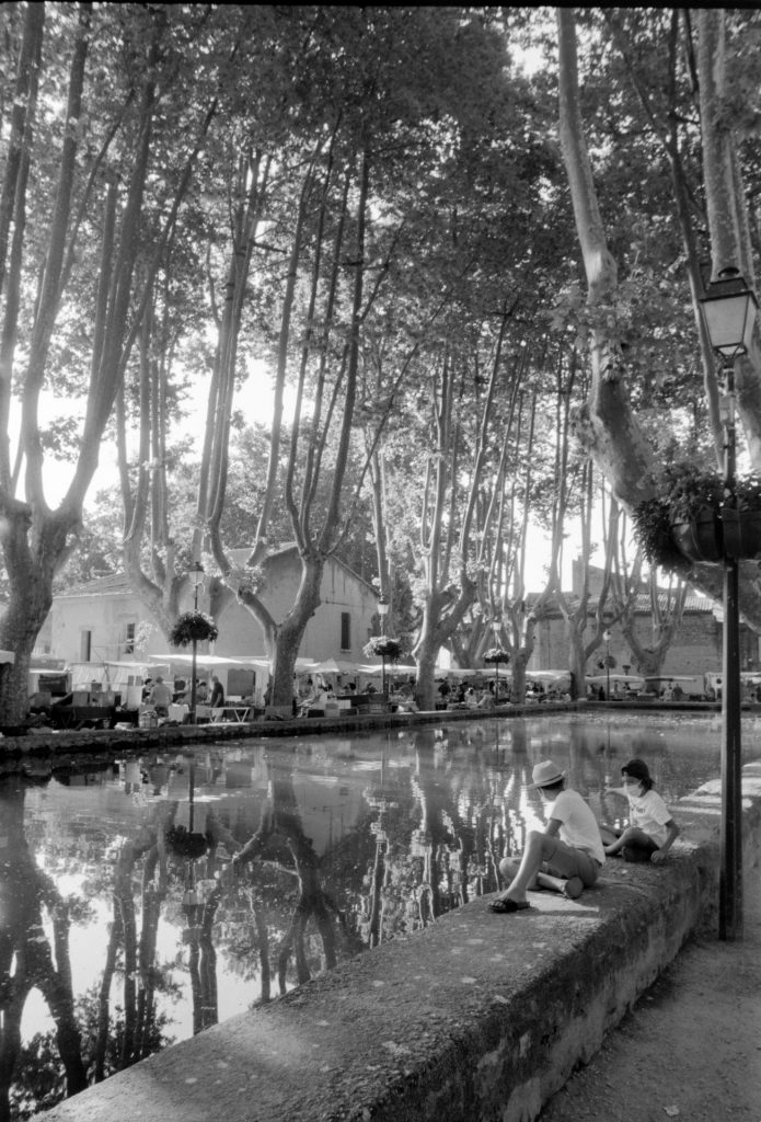 French village pond surrounded by plane trees