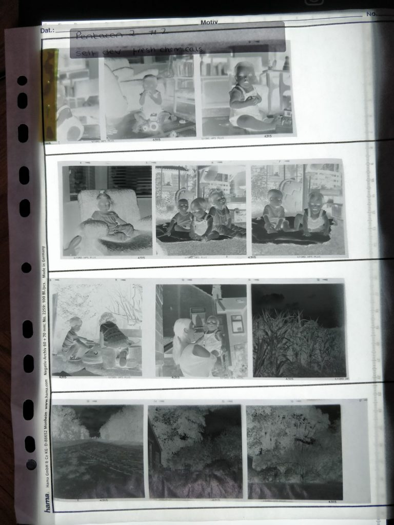 HP5 negatives