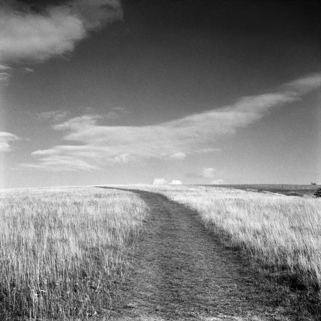 A grass path leading to the top of a hill with fluffy clouds