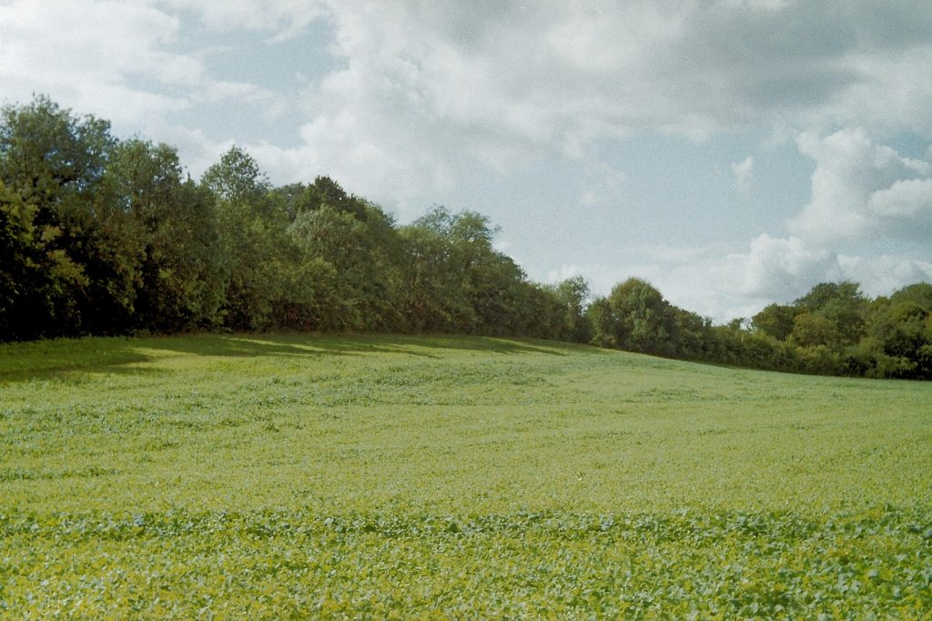 colour photo of countryside