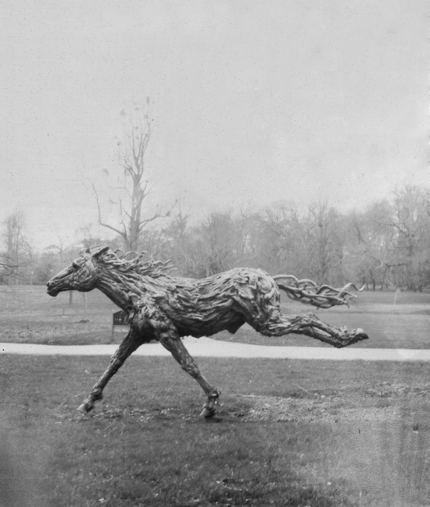 Photo of driftwood horse sculpture