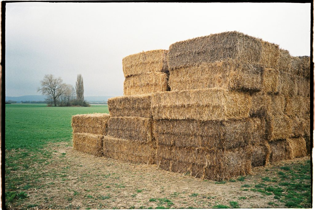 A stack of square straw bales stands at the edge of a field under a grey and dull sky.