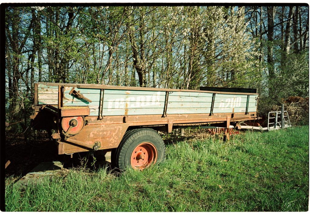 An old farming trailer stands at the edge of a woods.