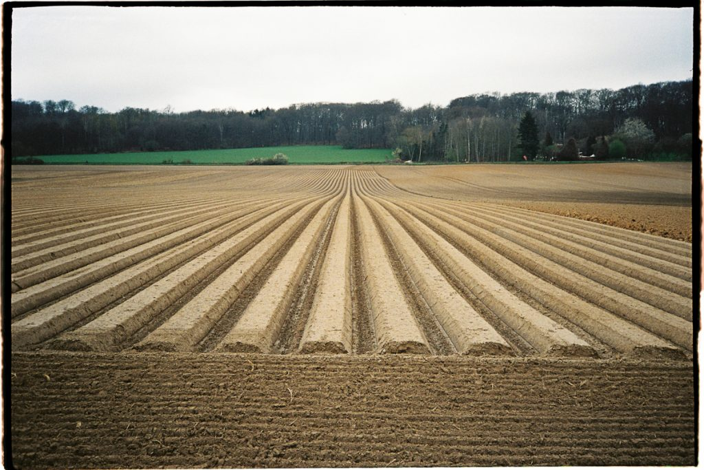A field with long and deep grooves that run from the viewer towards the horizon.