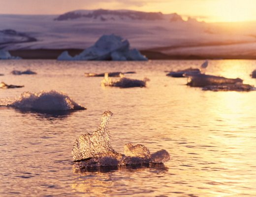 ice floating in a glacial lagoon