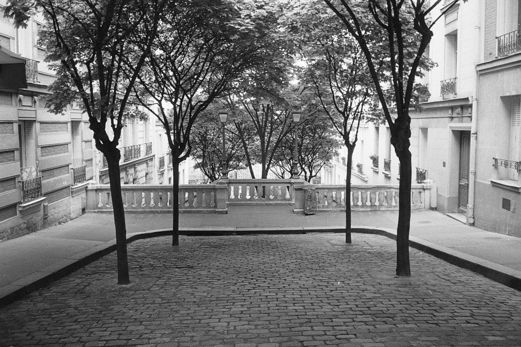 View from a square with trees