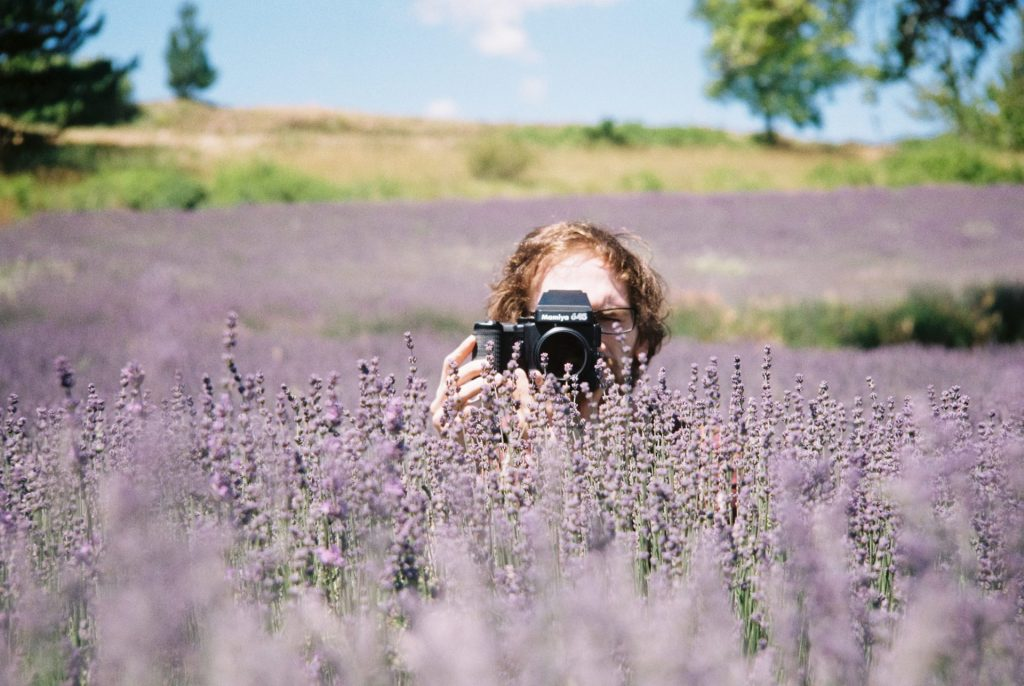 Photographer poking out of a field of lavender. Taken with a Voigtländer Bessamatic DeLuxe using a 90 mm lens and Kodak Gold 200
